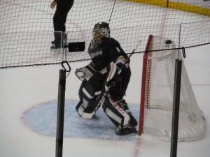 Anaheim Ducks Jonas Hiller