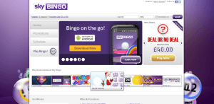 Sky Bingo Homepage